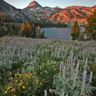 Sunrise at Ice Lake in the Eagle Cap Wilderness in northeast Oregon.