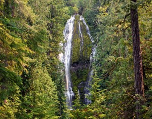 Lower Proxy Falls