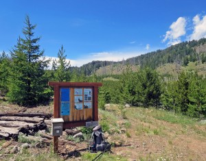 Tenderfoot Trailhead