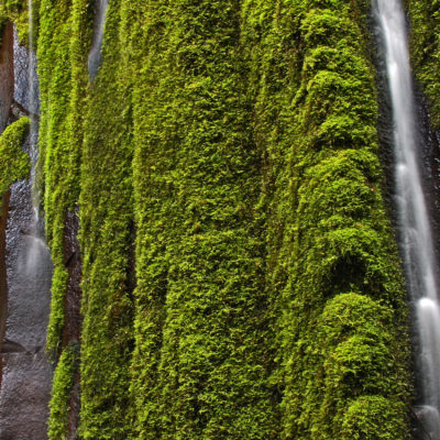 Columnar Falls can be found along the Dread and Terror segment of the Umpqua River Trail in southern Oregon.