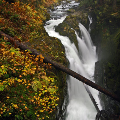 Sol Duc Falls in Olympic National Park in Washington.